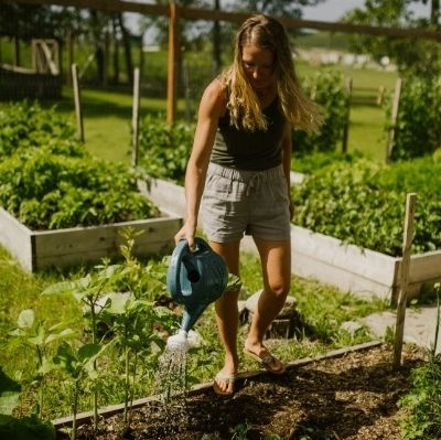 How often should i water my vegetable garden?  Here is everything you need to know to water your vegetable garden, containers and raised beds in the summer.