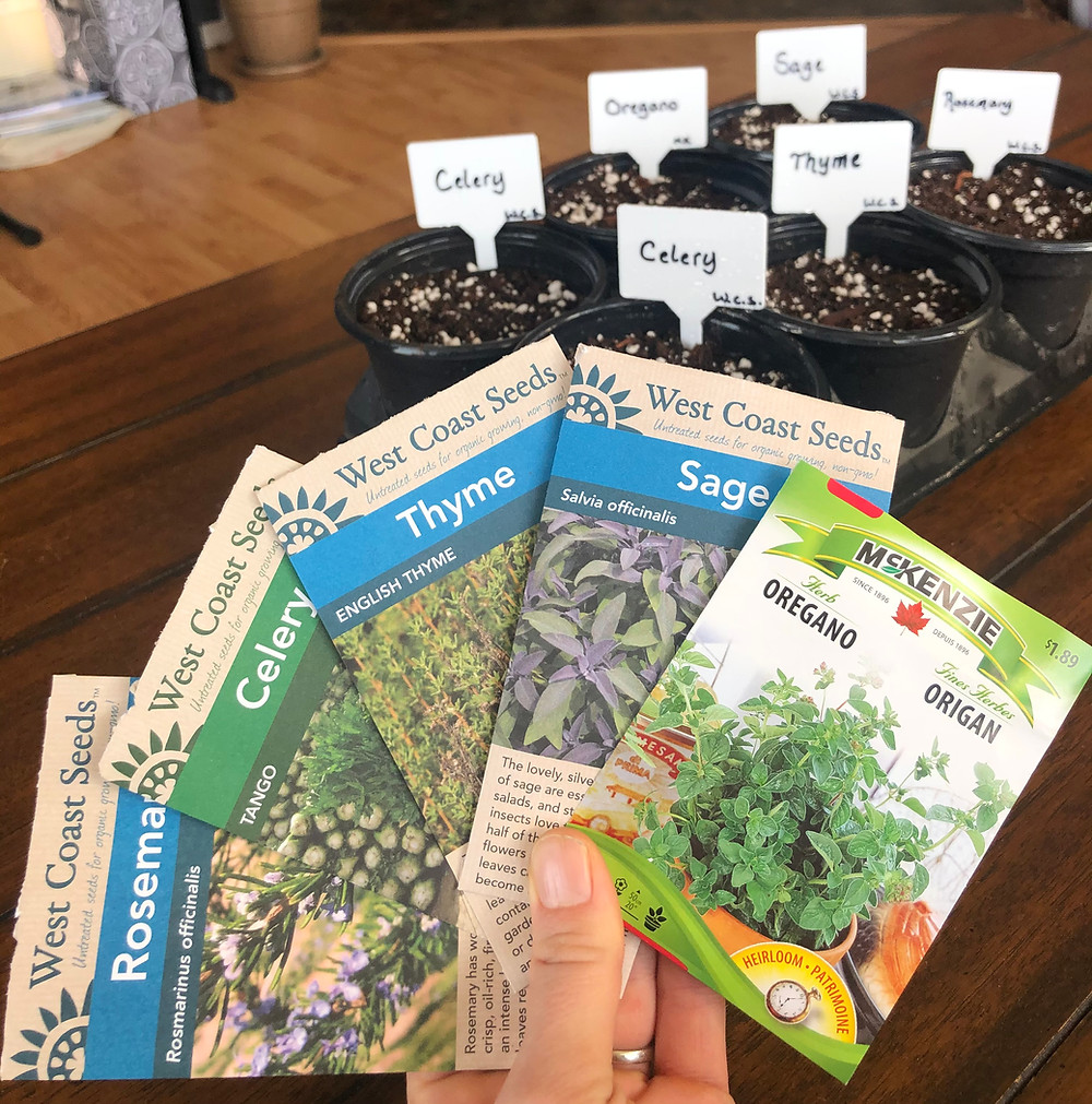 Vegetable seeds with a seed tray for the seeds to be started indoors in Calgary Alberta, Canada zone 3 growing zone.