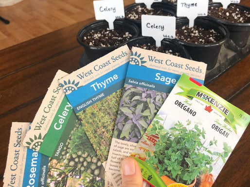 When to Start Seeds Indoors - Alberta