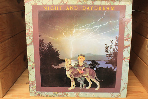Night and dream (Record)