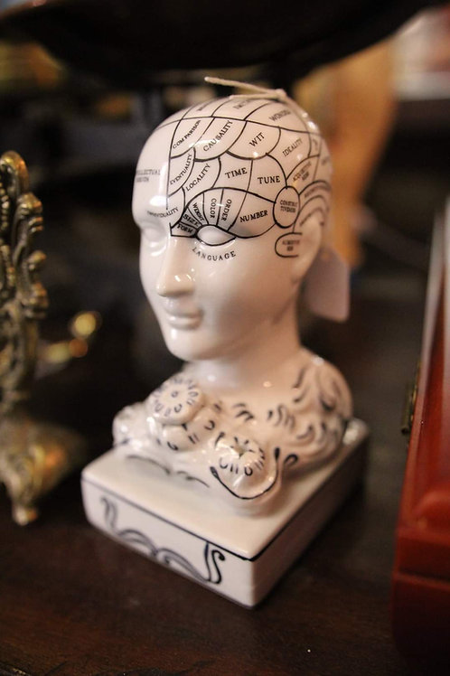 Phenology Head.