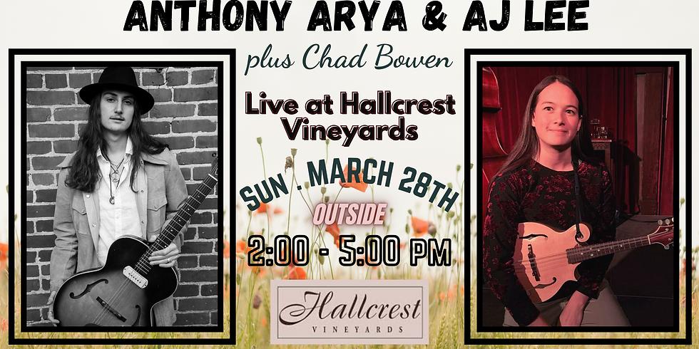 Anthony Arya, AJ Lee, & Chad Bowen: Live at Hallcrest Vineyards
