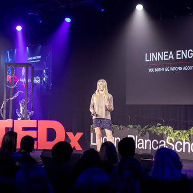 Linnea Engstrom