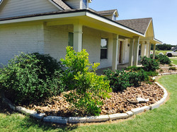 After - Pruning & Stonework