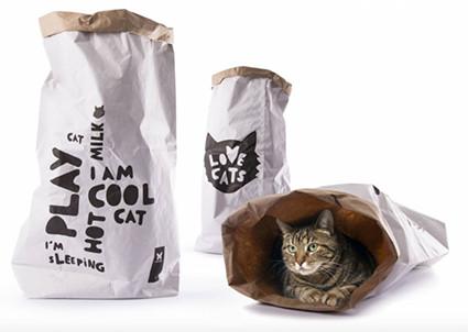 Niche et aire de jeux (Live Cat's bag).