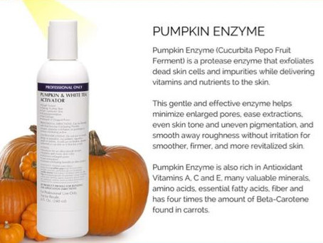 Pumpkin Enzyme for BIHAKU