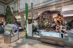 David H. Koch Hall of Fossils