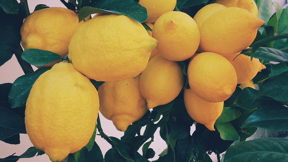 Meyer kezeletlen citrom 500g