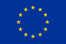 BMB - FET Proactive, EU HORIZON 2020