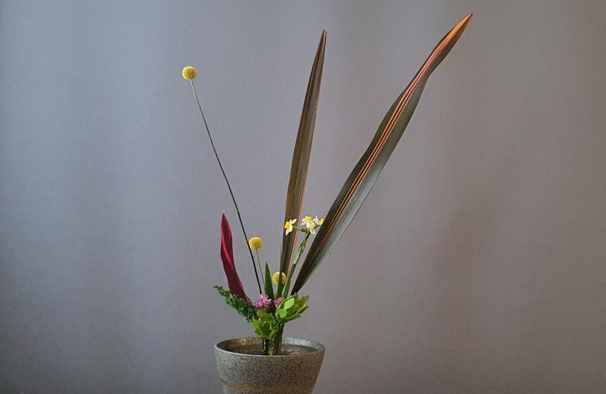 Rikka Shimputai door Geeske Jansen