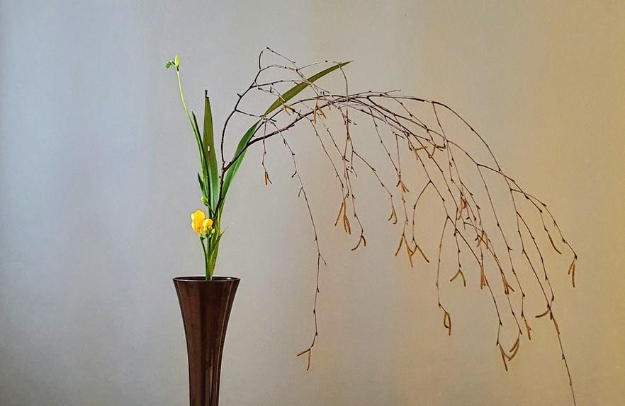 Shoka SHimputai door Noriko Momose