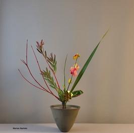 Rikka Shimputai door Marian Bartels