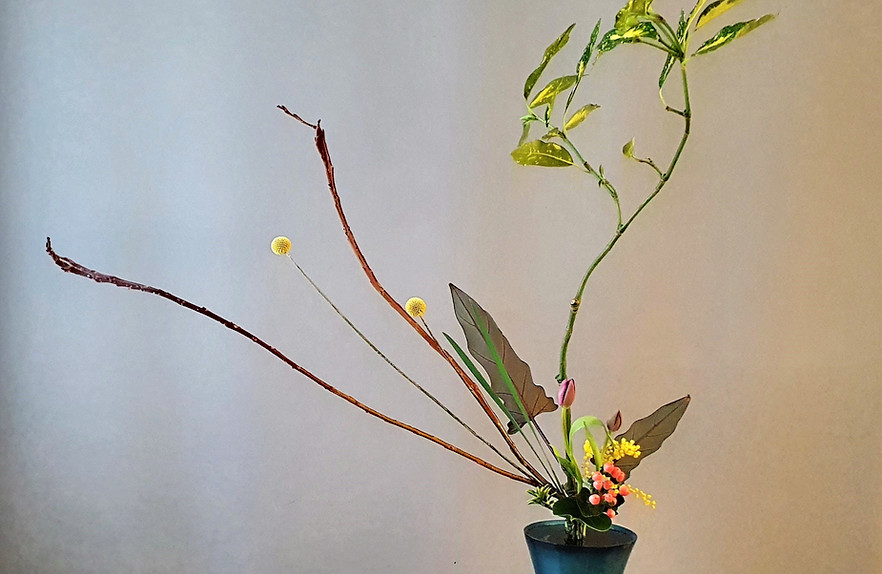Rikka Shimputai by Marian Bartels