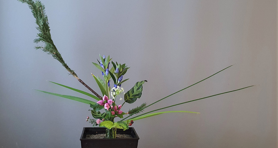 Rikka by Mei Li