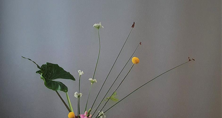 Rikka Shimputai door Mei Smulders