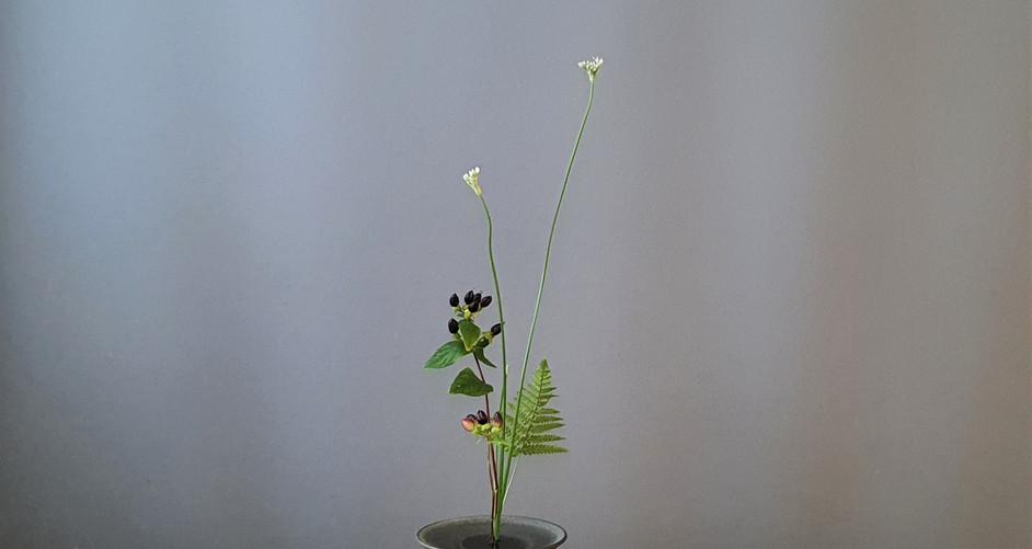 Mini shoka shimputai by Qiran