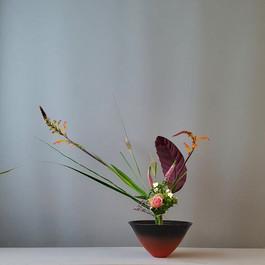 Rikka Shimputai door Henny