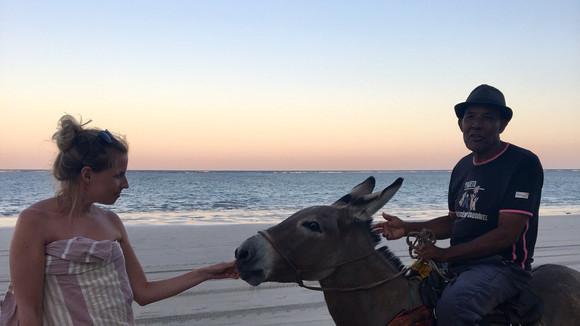 Encounter on the beach