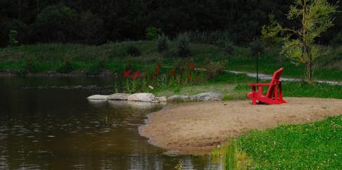 Zen pond, Orford