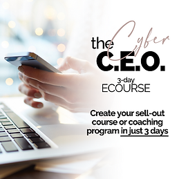 The Cyber CEO - Facebook Ads (1).png