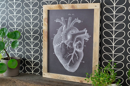 Cadre en bois, anatomie