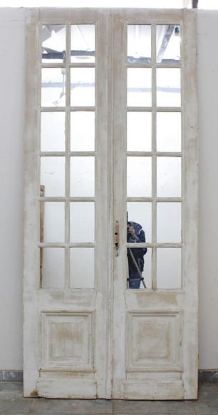 MIRRORED PANED DOOR