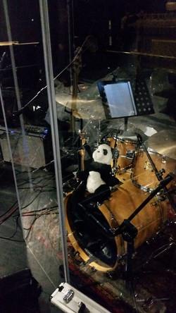 Koordynator instr. perkusyjnych