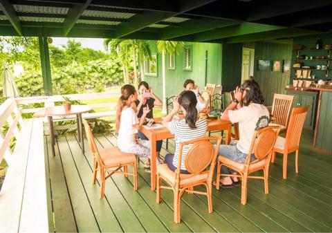 世界に繋がる笑顔を〜ハワイ島コナにある小さなコーヒー農園にて笑顔インフルエンス活動〜