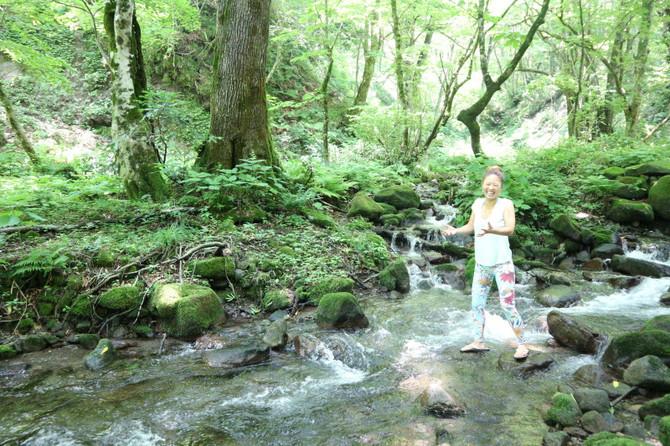 休日その②♪『木谷沢渓流』に行ってきました〜@鳥取県 奥大山