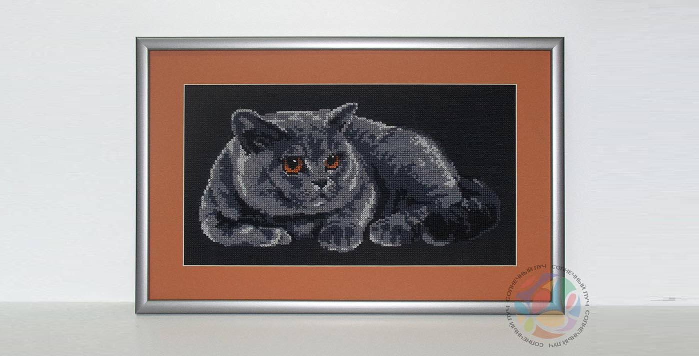 cats-house-18-3009.jpg