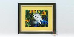 cats-house-16-2962.jpg