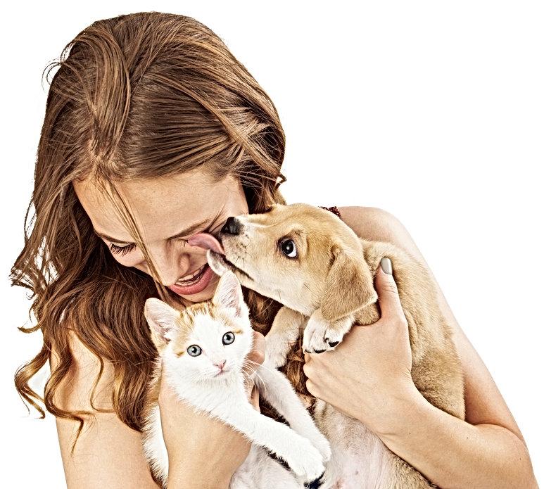kittens_canines_model.jpg_20210224125310