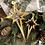 Thumbnail: Hänger 'Desino' Gold