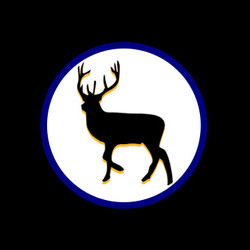 Guided Whitetail Deer Hunt