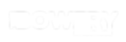 TheBowery-Logo - CO White.png