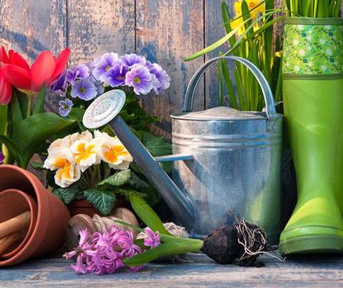 abb00_Home-and-Garden-Shoppers-BANNER_RA