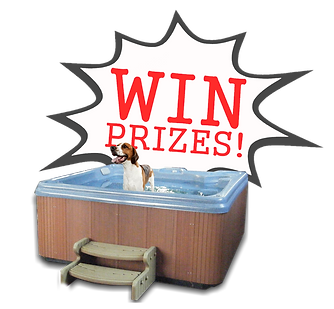 Dog In Hot Tub Win Prizes2.png