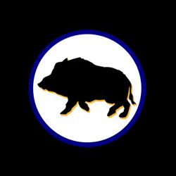 Guided Hog Hunt