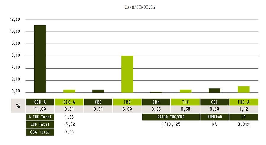 CHINMGAZA CBD-chart.png
