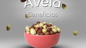 Avelã: conheça os incríveis benefícios desse fruto!