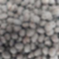 amendoa-70.jpg