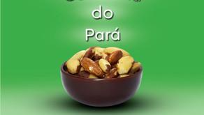 Castanha do Pará: um fruto rico em Selênio!