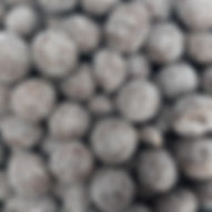 macadamia-50.jpg