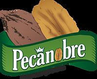 Logotipo - PECANOBRE.png