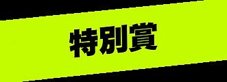 特別賞(WIX).png