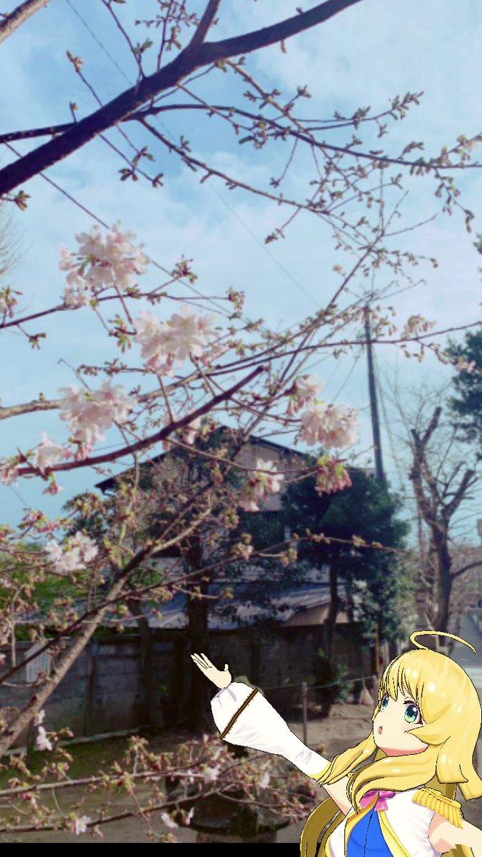 春みっけ♪