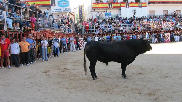 SPAIN Sept '10 041.JPG