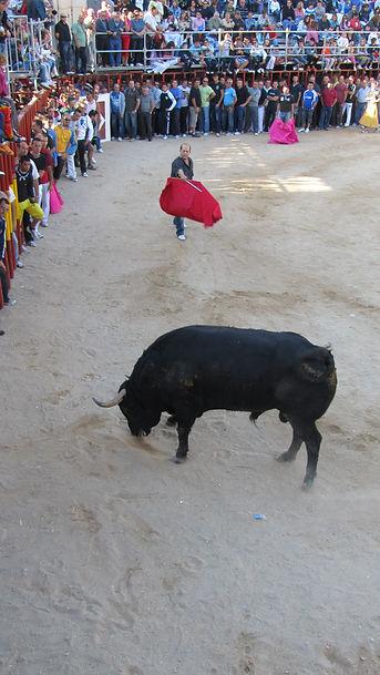 SPAIN Sept '10 016.JPG