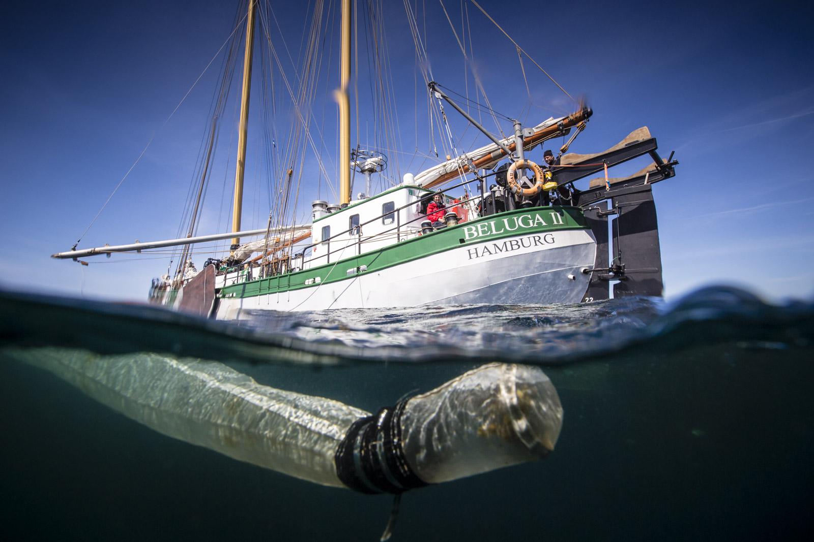 170531-WR SVB Canna Trawling-6421