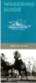 Betting Guide Cover.jpg
